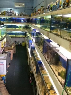 Clearwater Aquariums - Tourism Canberra