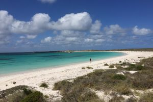Abrolhos Island Half Day Fly and Flipper - Tourism Canberra