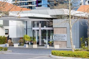 Peppers Gallery Hotel - Tourism Canberra